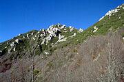 Abruzzo NP, Italy