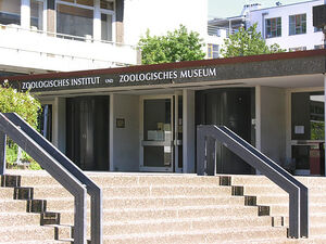 Zoologisches-museum-4