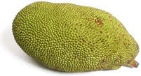 File:Jack fruit.jpg