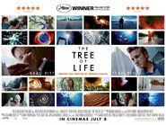 TreeLife 74