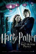 HarryPotterHalfBloodPrince 021