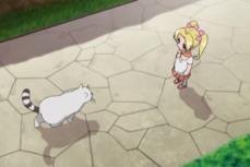 Kirimi and a cat