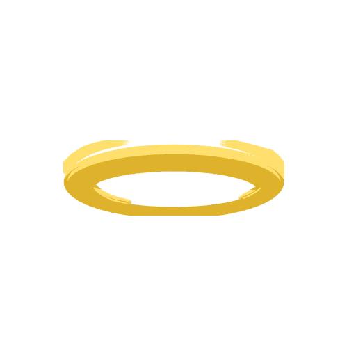 Drawings Ofa Ring