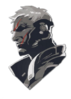 Soldier 76 Spray - Old Soldier