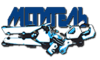 Zarya Spray - Avenger