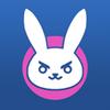Pi bunny