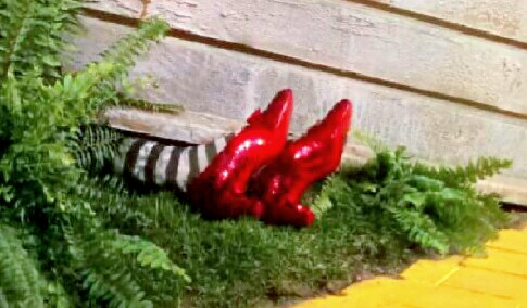much like the wizard of ozWizard Of Oz Ruby Slippers Under House
