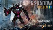 EnderShadow