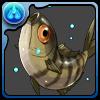 No.832  コズクラ(出世魚)