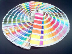 PANTONE COLOR FAN DECK