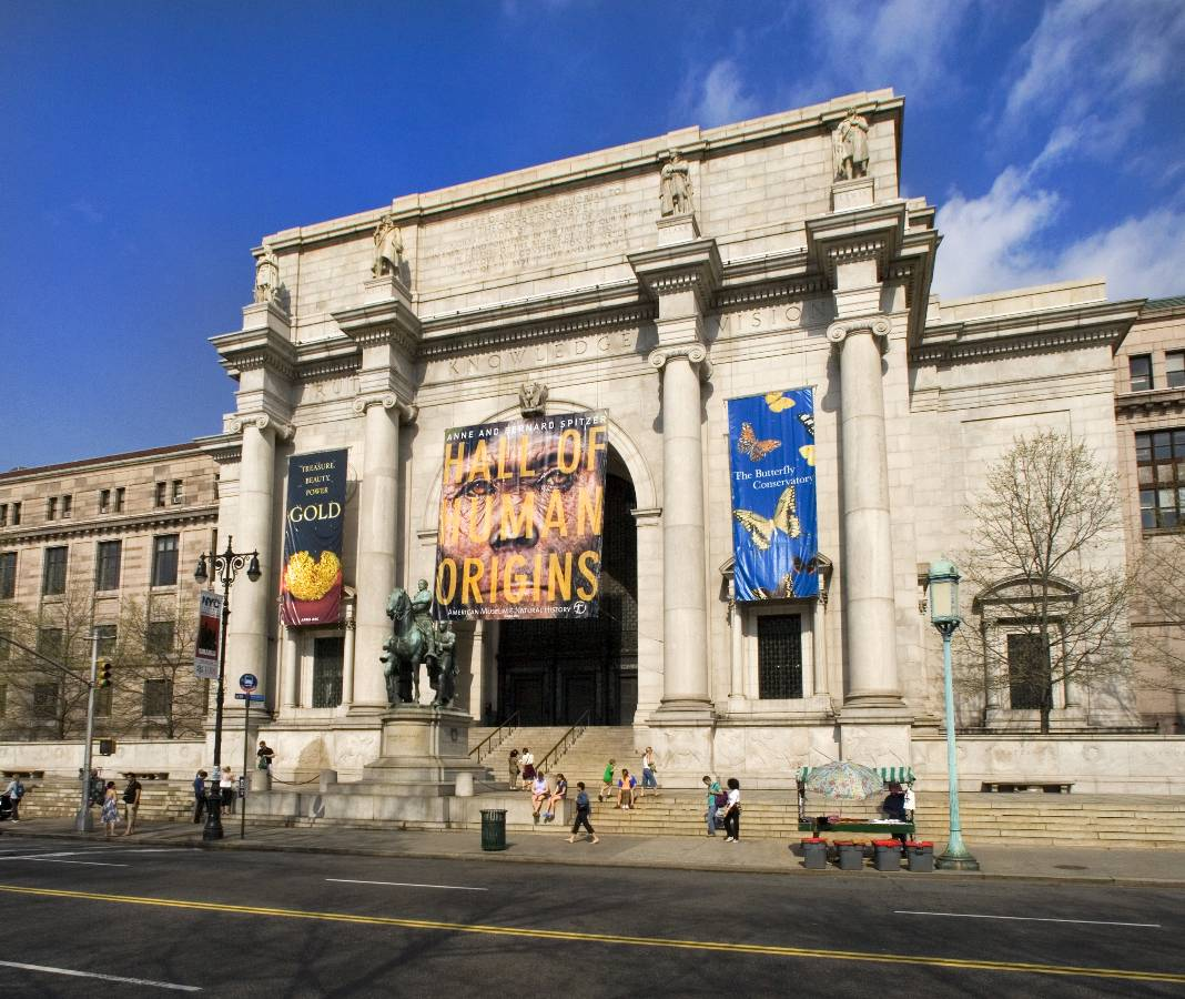 Natural History Museum Nyc Before It Was A Museum