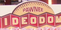 Pawnee Video Dome