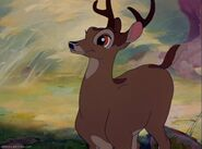 Grown-Up Bambi