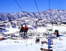 Yonseo Resort