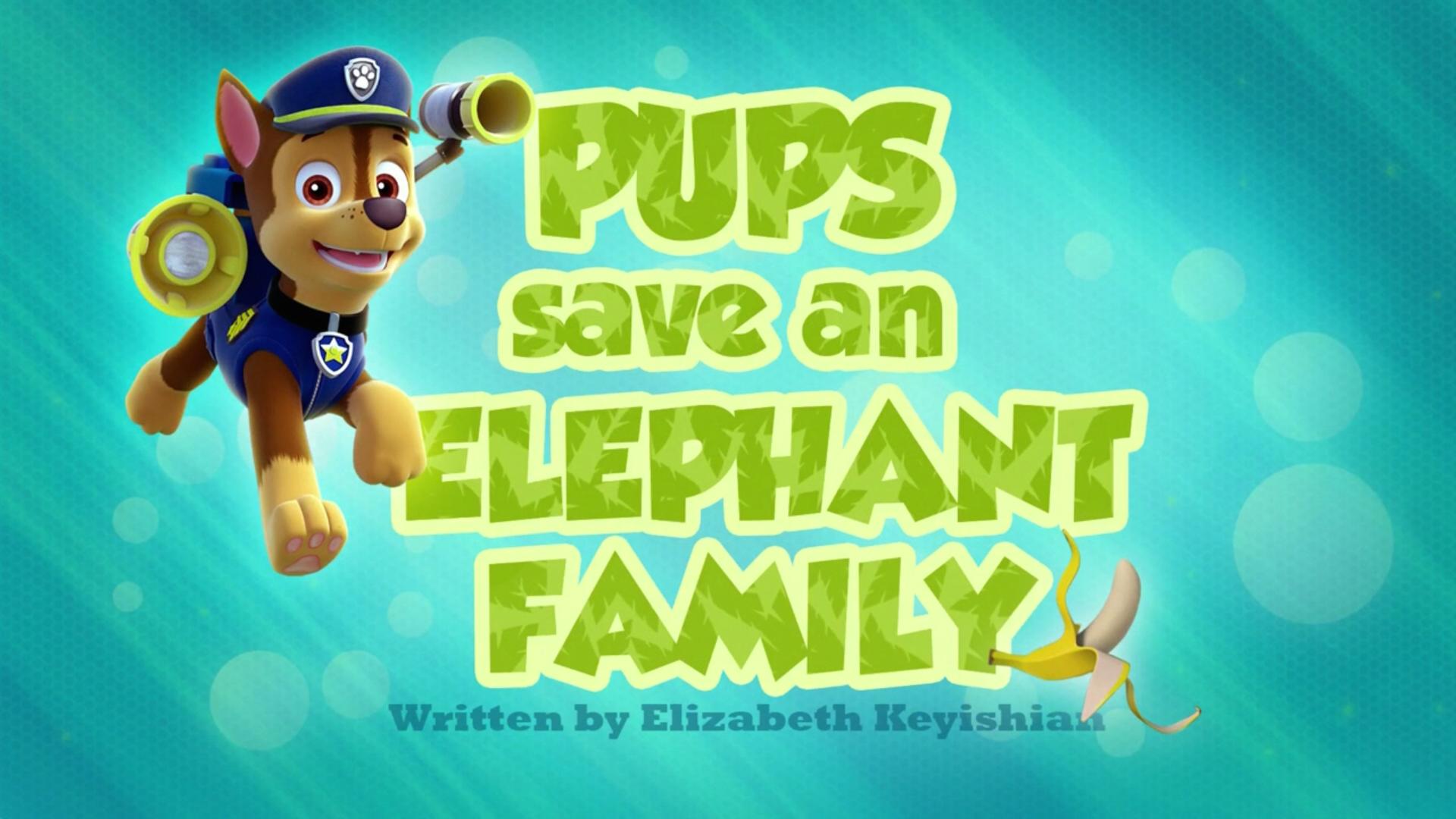 Pups Save An Elephant Family Paw Patrol Wiki Fandom
