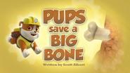 Pups Save a Big Bone