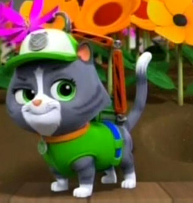 Cat Rocky Paw Patrol Wiki Fandom Powered Wikia