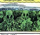 Seaweed Creatures