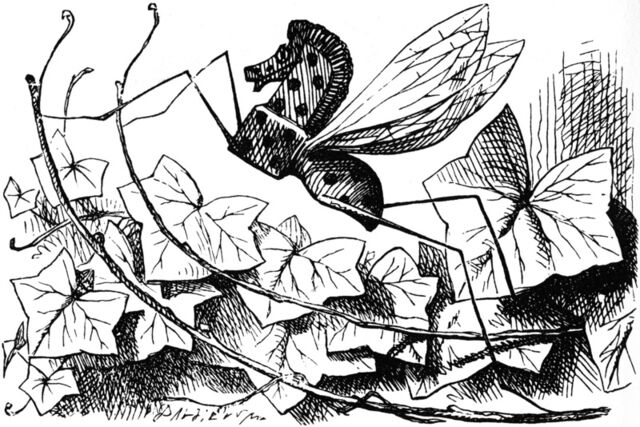 File:Rocking horse fly.jpg