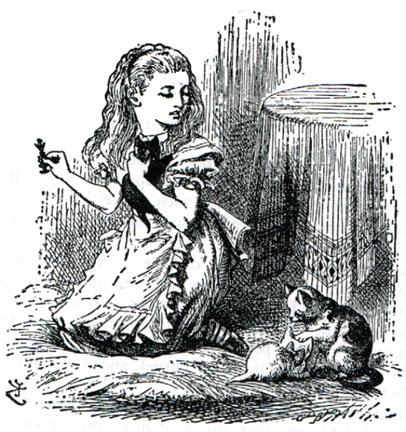 File:Dinah and kittens.jpg