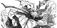 Snap-Dragonfly