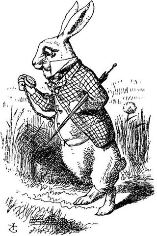 File:WhiteRabbit.jpg