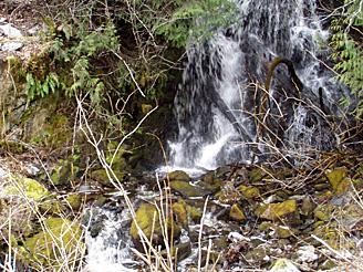 Baby waterfall2