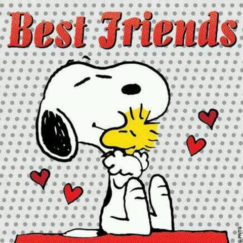 File:The Best Friends.jpg