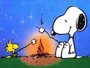 Snoopy and Woodstock camping
