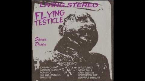 Flying Testicle - Space Desia