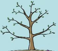 Peep's favourite tree growing1