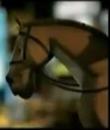 File:Police Horse.jpg