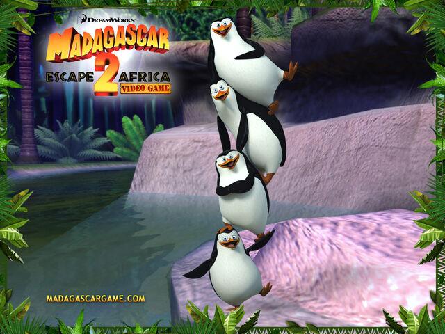 File:Penguins2.jpg