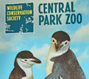 The Real Central Park Zoo