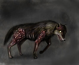 Concept dog