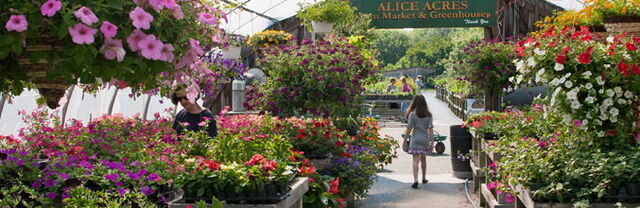 File:Alice Acres Farm Market.jpg