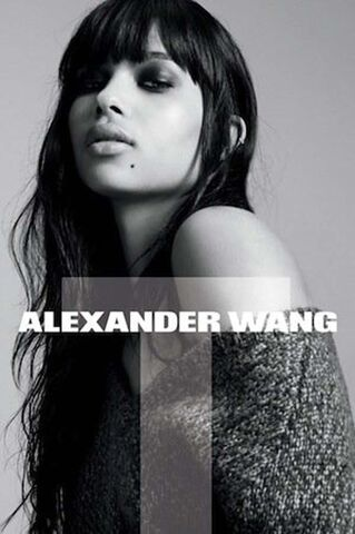 File:For Alexander Wang.jpg