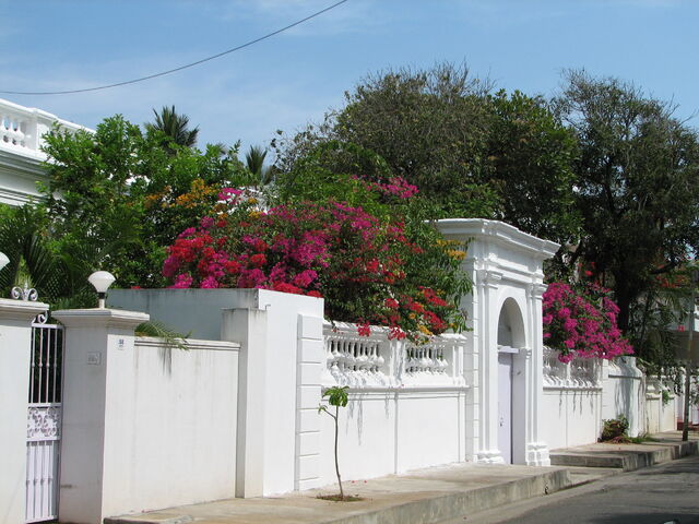 File:India - Pondicherry - 001 - Vibrant flowers & French architechture (491010780).jpg
