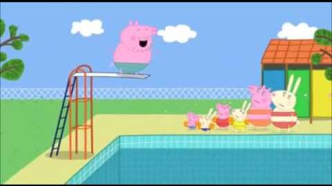 Daddy Pig expertly dives