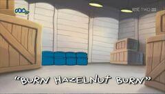 Burn Hazelnut Burn