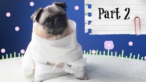 PUGA DOES EVERYTHING! - Part 2