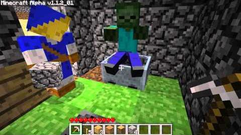 Minecraft Multiplayer Fun