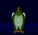 Dezo owl