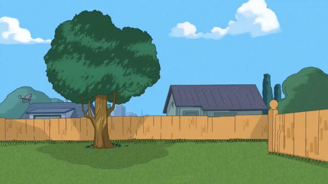 File:WCIM -Empty backyard.jpg