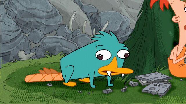 File:Perry in Tri Stone Area.jpg