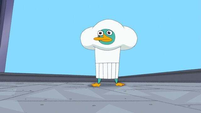 File:326b - Perry in a Chef's Hat.jpg