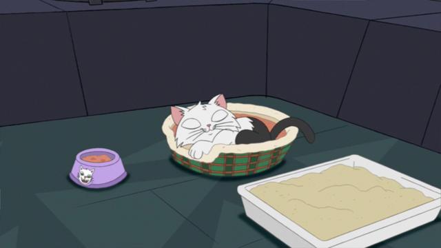 File:Kittysleep.png