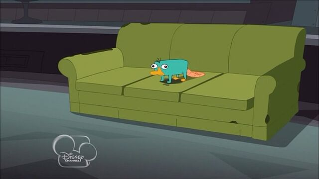 File:Perry Pees on the Couch.jpg