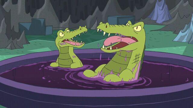 File:Crocodiles.jpg