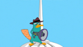 PerryWithPoopanator